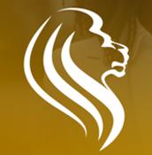 blackleader icon img